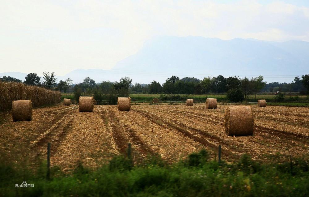 意大利农村