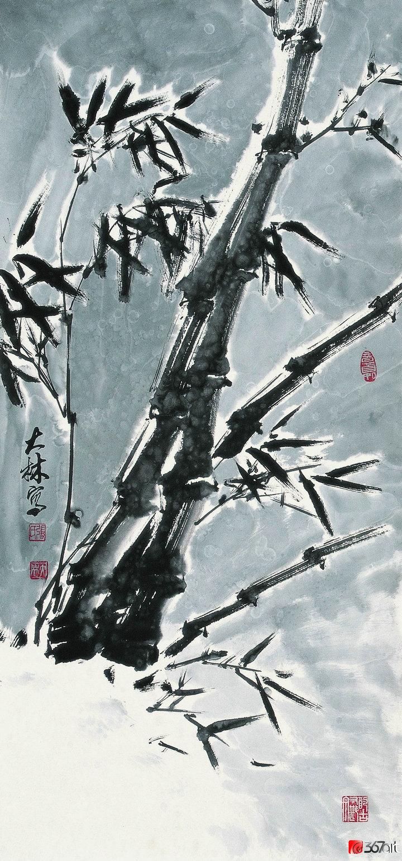 张大林图片