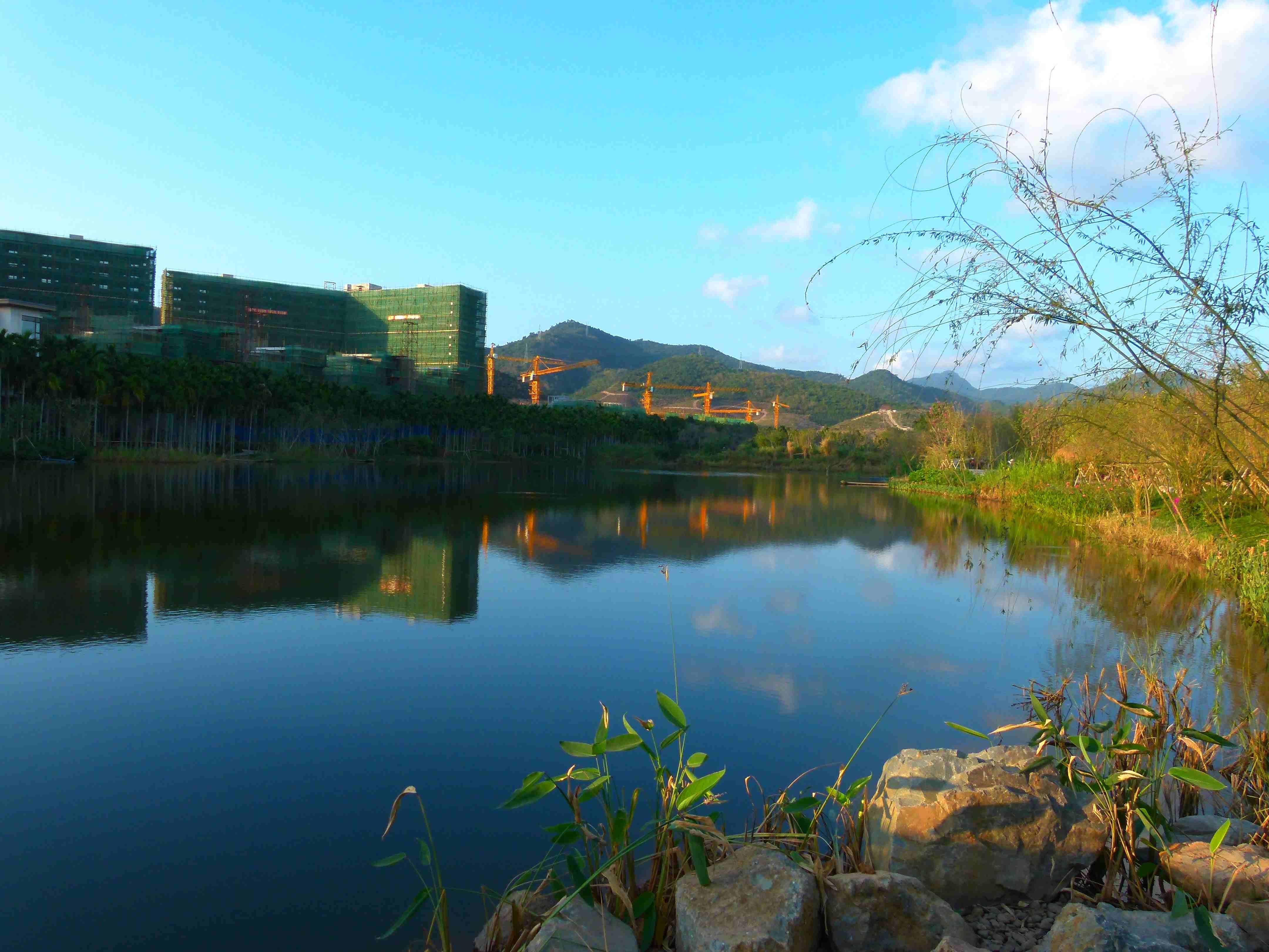 三亚万科森林度假公园图片