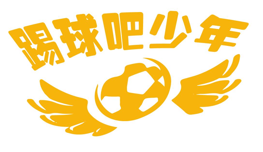 新媒体网络运营,线下活动策划为一体的青少年足球教育平台.图片