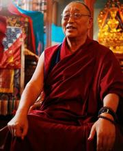 雍仲本教法王隆多丹比尼玛