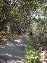 漳州芝山公园旧貌
