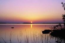 长荡湖湿地公园