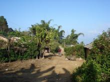大树地自然村的基础设施