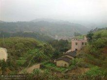 平塘镇村照片