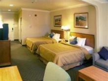 圣荷西机场舒适套房酒店
