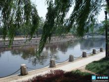 青岛市海泊河公园