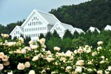 朝鲜大学各级学院展图