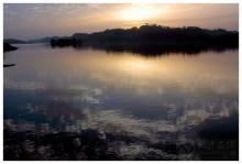 古宇湖的候鸟群