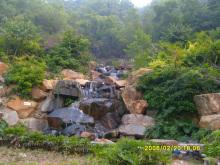 板樟山森林公园