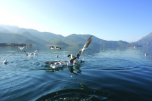 湖北丹江口水库风景——亚洲天池