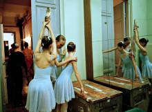 水岛津芭蕾舞教室种子