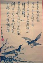 刘涛个人资料