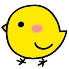 yy游戏小黄鸡表情包分享展示图片