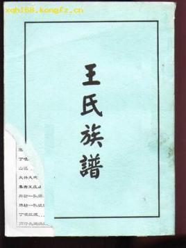 沙堤王氏家庙图片