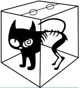 薛定谔的猫_彗星来的那一夜_薛定谔的猫通俗解释_薛 ...