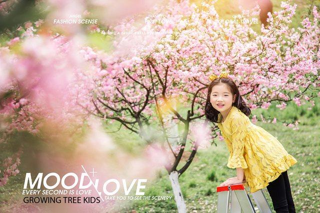 成长树摄影儿童摄影