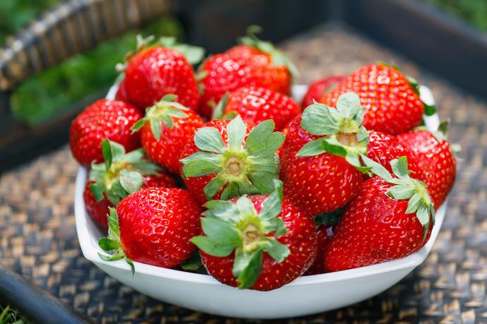 红草莓采摘园