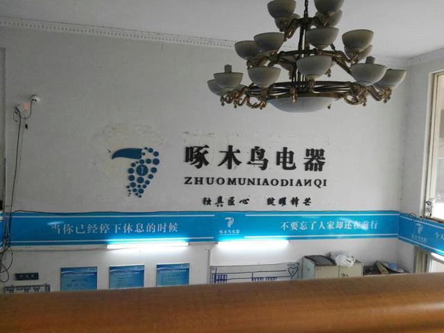 啄木鸟电器(莲花店)