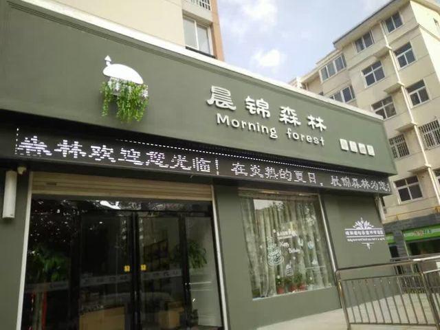 晨锦森林(平安南路店)