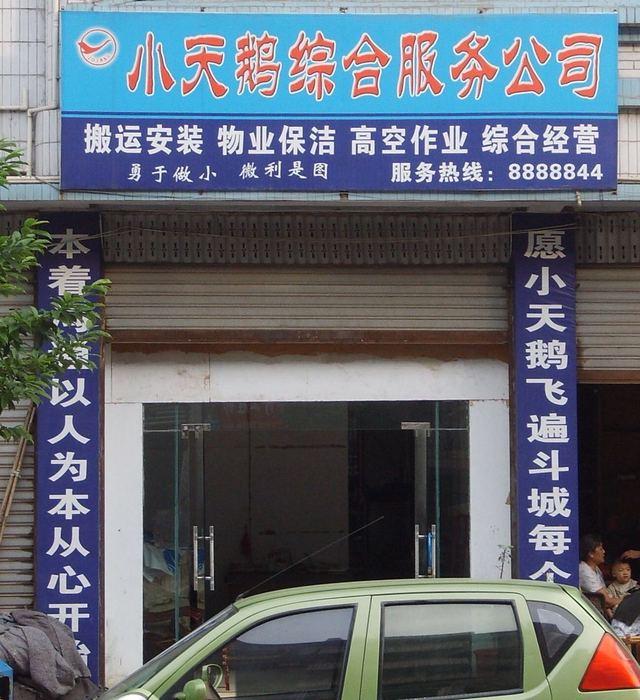 小天鹅综合服务公司