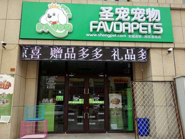 圣宠宠物店(武清尚东金街店)
