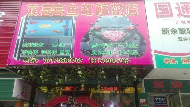 双囍鱼缸鲜花店(钤阳西路店)