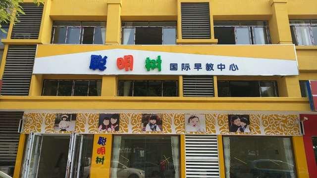 聪明树早教咨询中心(滨湖分店)