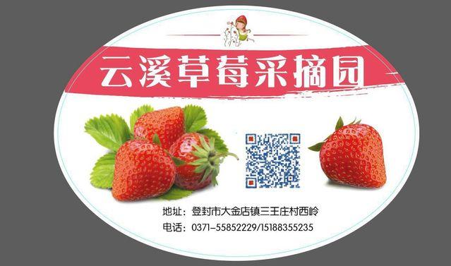 云溪草莓采摘园