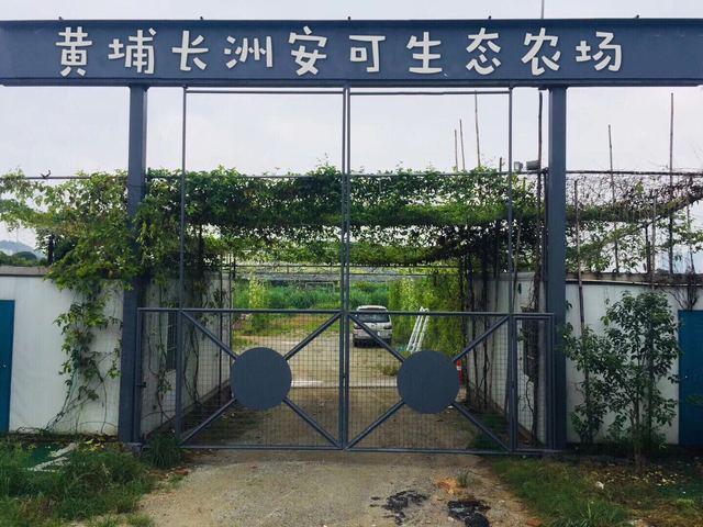 黄埔长洲安可生态农场