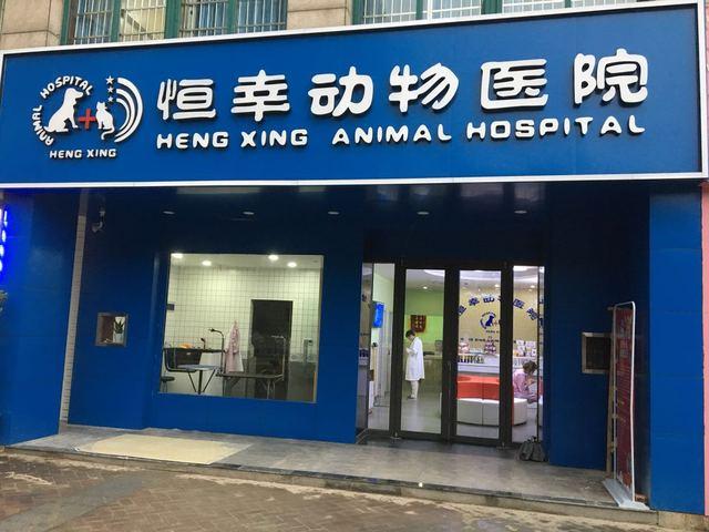 恒幸动物医院