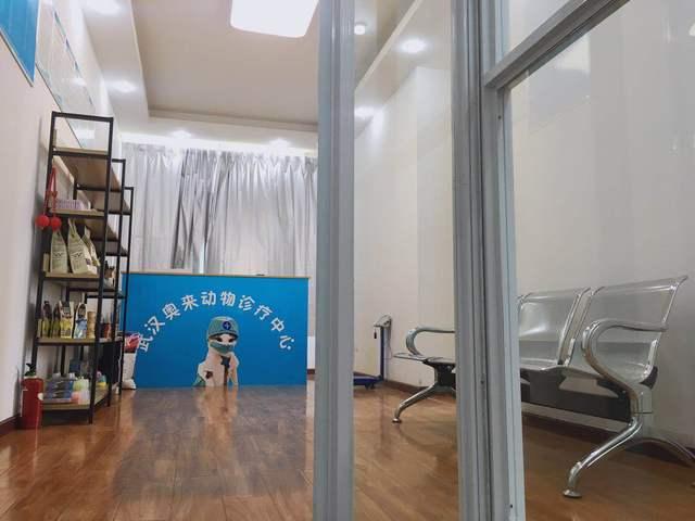 武汉奥来动物诊疗中心