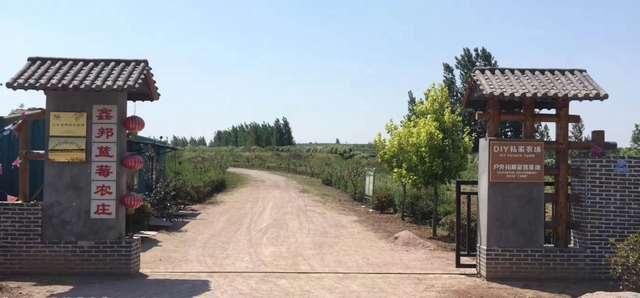 鑫邦蓝莓农庄
