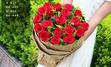 栀子花坊19朵玫瑰花束