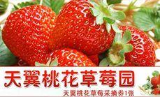 天翼草莓园草莓采摘
