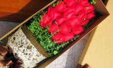 沙河物美19支玫瑰