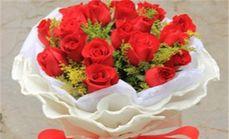唯美盛典11支红玫瑰