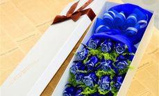 唯美盛典19支蓝玫礼盒
