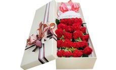 爱琴海鲜花19支康乃馨礼盒