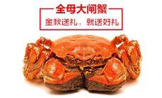 阳澄湖大闸蟹【全母型】