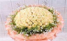 雨花石鲜花9朵玫瑰花