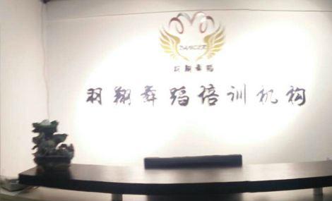 羽翔舞蹈培训(万达校区店)