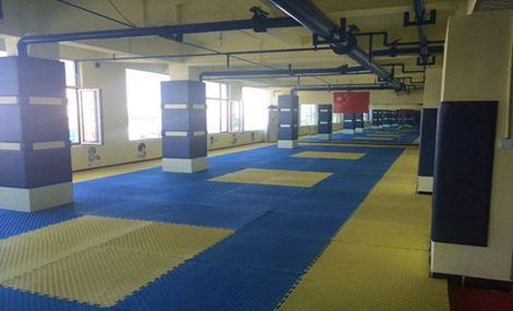 亚奥国际跆拳道联盟(坞城南路店)