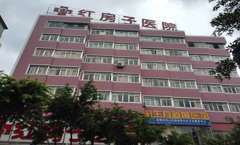 红房子医院