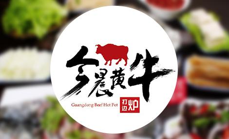 今晨黄牛广东潮汕牛肉火锅 - 大图