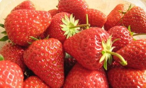 农家人草莓园