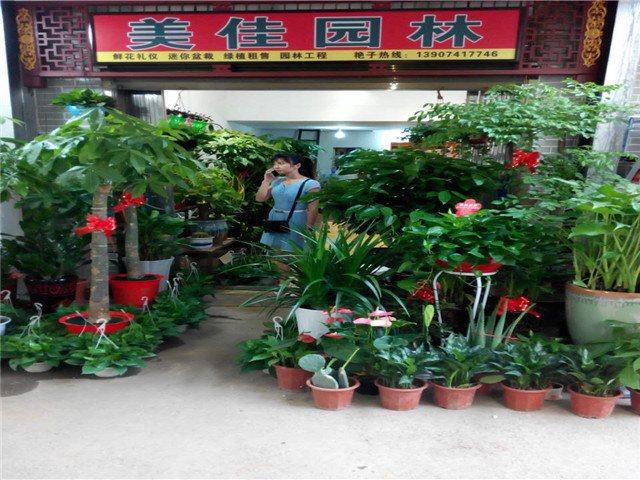 美佳园林花卉店
