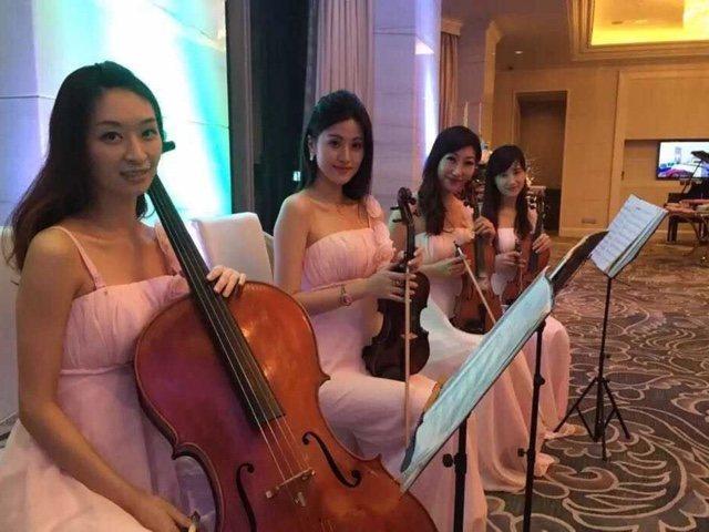 青栀乐团小提琴乐器演奏