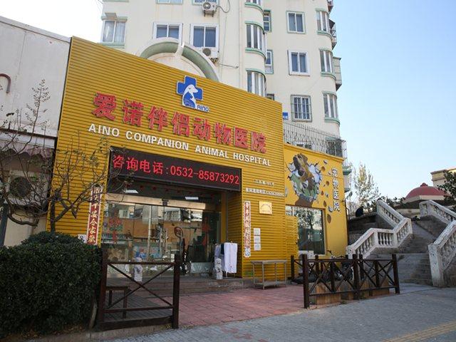 爱诺伴侣动物医院(江西路店)