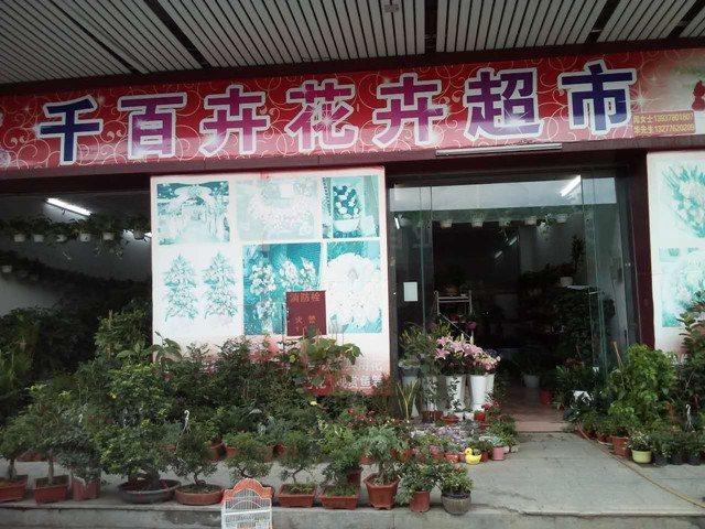 千百卉花卉超市